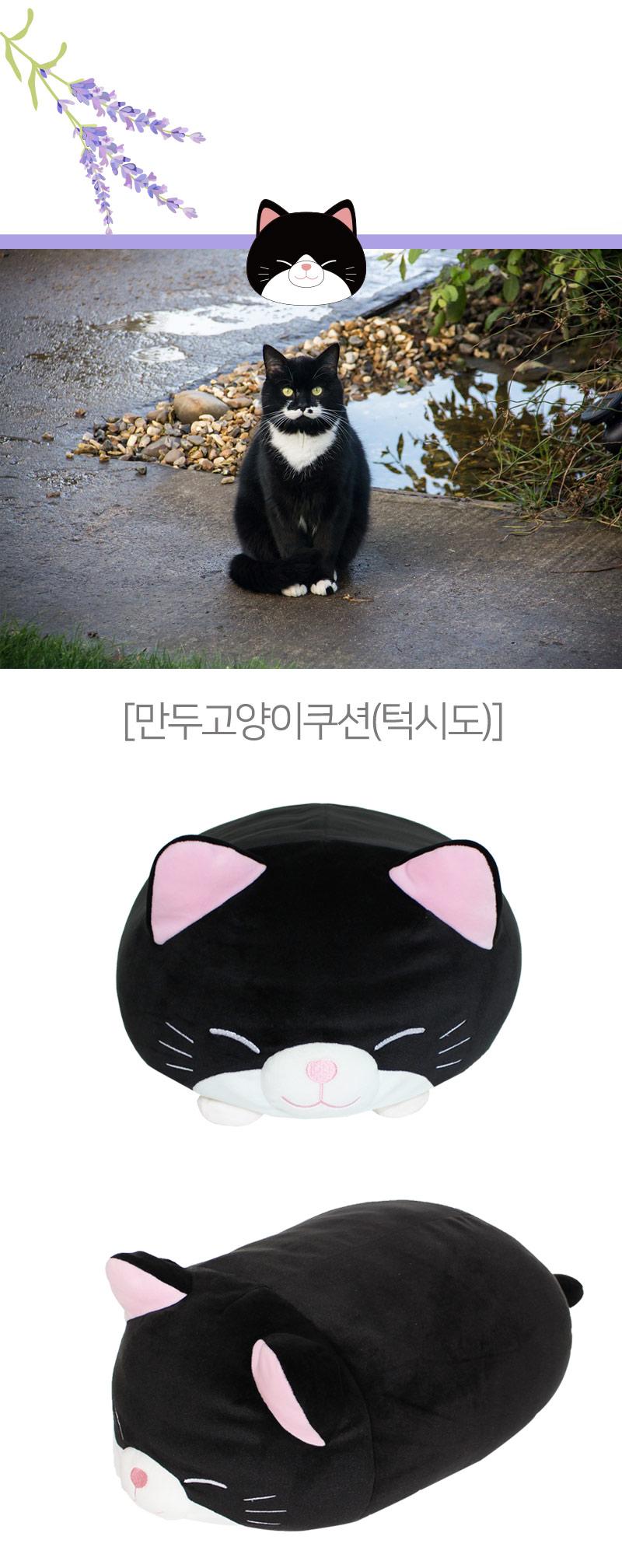 모찌모찌 만두 고양이 쿠션 인형 45CM 5종 모음 - (주) 이젠크리에이션, 26,000원, 청소도구, 테이프 크리너